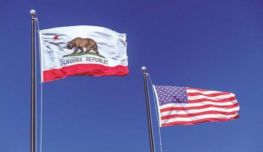 カリフォルニアスタイルのカッコいいダイニングチェア5選