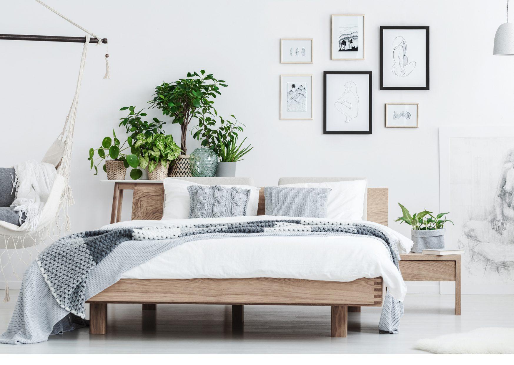 ベッド 選び方